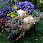 Country Cottage Fall https://ourfairfieldhomeandgarden.com/our-fairfield-home-garden-welcomes-fall/