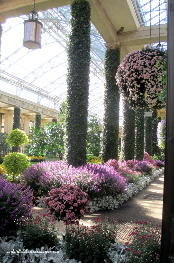 conservatory path https://ourfairfieldhomeandgarden.com/field-trip-chrysanthemum-festival-at-longwood-gardens/