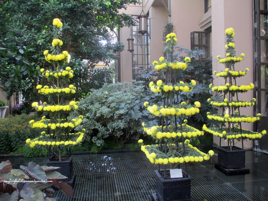 pagodas https://ourfairfieldhomeandgarden.com/field-trip-chrysanthemum-festival-at-longwood-gardens/