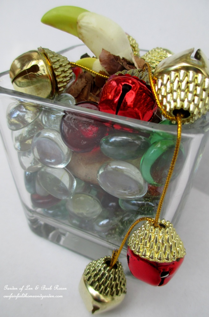 Paperwhite in colored glass http://ourfairfieldhomeandgarden.com/flowering-holiday-bulbs/