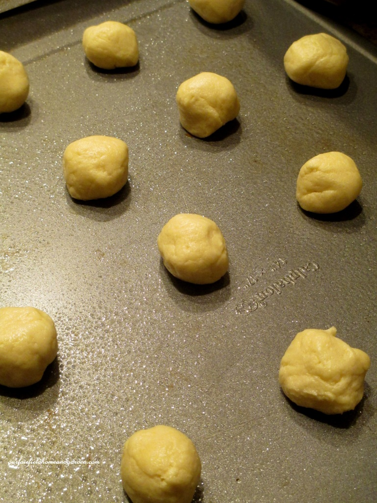 Easy Sugar Cookies http://ourfairfieldhomeandgarden.com/easy-sugar-cookies-no-rolling-or-cutting/