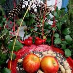 Birdfeeder Windowbox http://ourfairfieldhomeandgarden.com/winter-decorating-at-our-fairfield-home-garden/