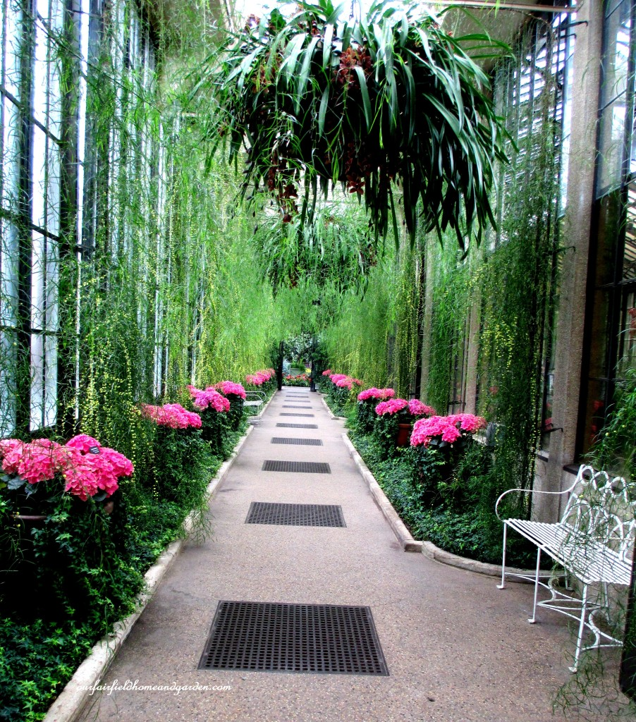 Flowering Hall ~ Longwood Gardens https://ourfairfieldhomeandgarden.com/a-visit-to-longwood-gardens-orchid-extravaganza-2015/