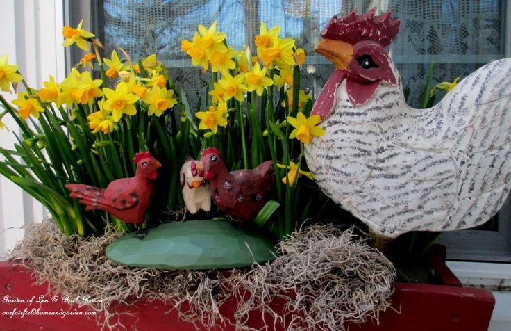 Daffodils and Chickens Windowbox https://ourfairfieldhomeandgarden.com/spring-windowboxes/