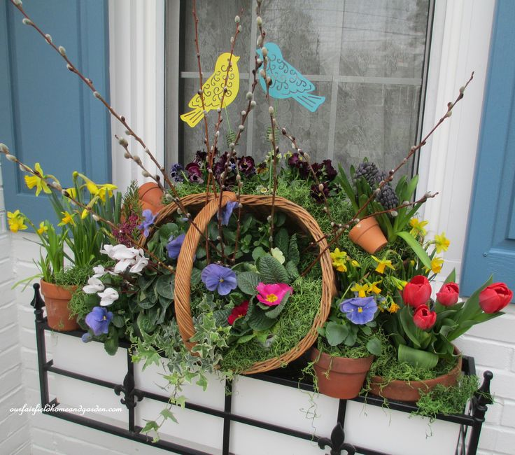 Spring Windowbox with Tulips, Pansies Ivy, Hyacinths, Daffodils, Primroses, Heather, Cyclamen and Pussy Willow https://ourfairfieldhomeandgarden.com/spring-windowboxes/