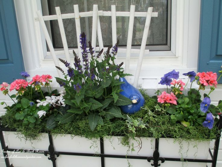 Windowbox with Geraniums, Cyclamen, Pansies and Salvia http://ourfairfieldhomeandgarden.com/spring-windowboxes/