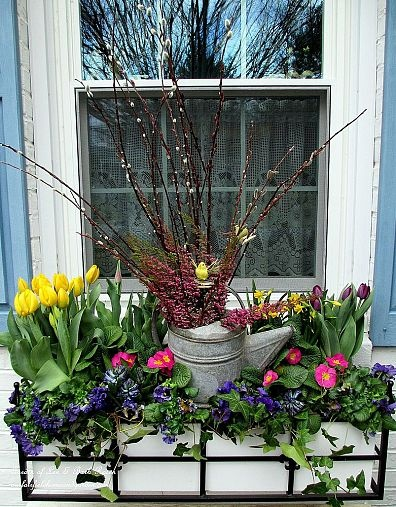 Spring Windowbox with Tulips, Pansies, Heather, Pussy Willow, Daffodils, Ivy and Primroses https://ourfairfieldhomeandgarden.com/spring-windowboxes/