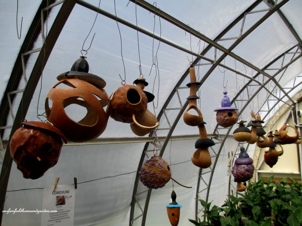 Carved Gourds Display http://ourfairfieldhomeandgarden.com/road-trip-lancaster-county-greenhouses/
