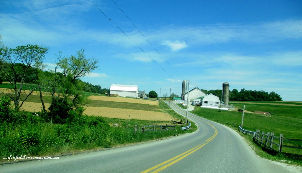 Driving down a country road. https://ourfairfieldhomeandgarden.com/road-trip-lancaster-county-greenhouses/