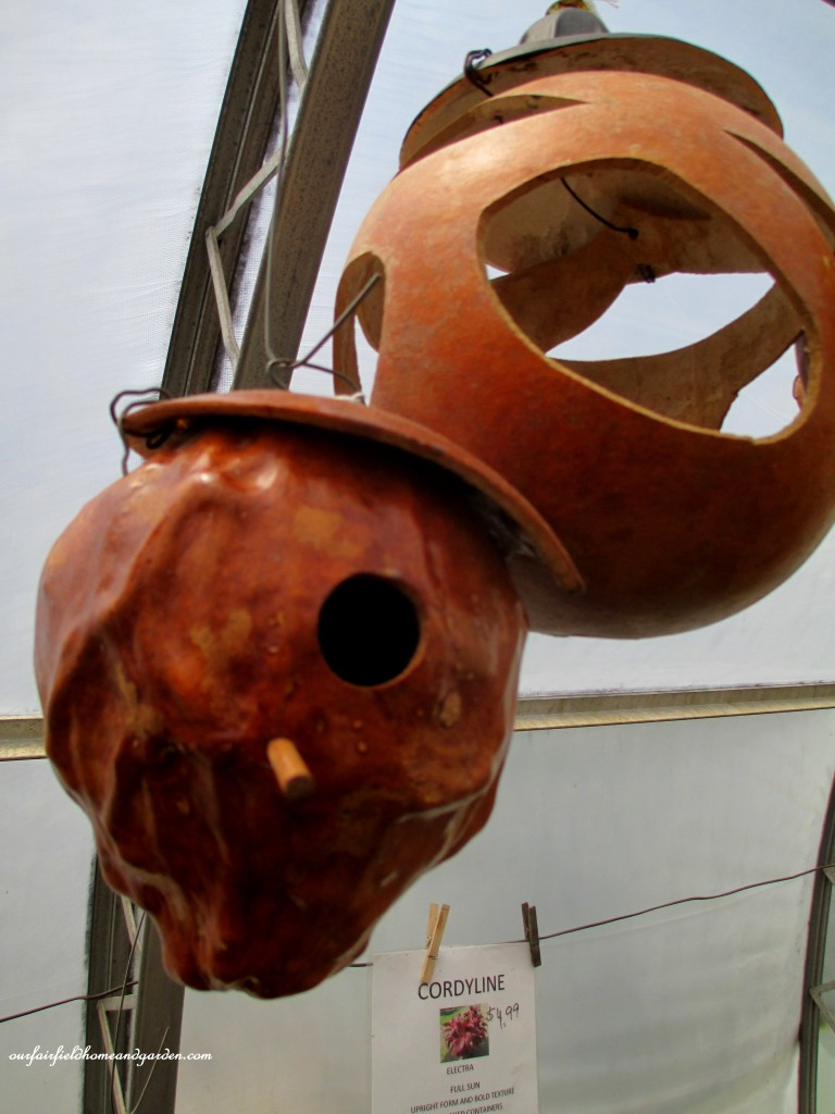 Gourd birdhouses and feeders http://ourfairfieldhomeandgarden.com/road-trip-lancaster-county-greenhouses/