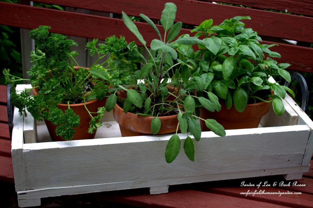 Horseshoe-Handled Herb Box http://ourfairfieldhomeandgarden.com/horseshoe-handled-herb-box/