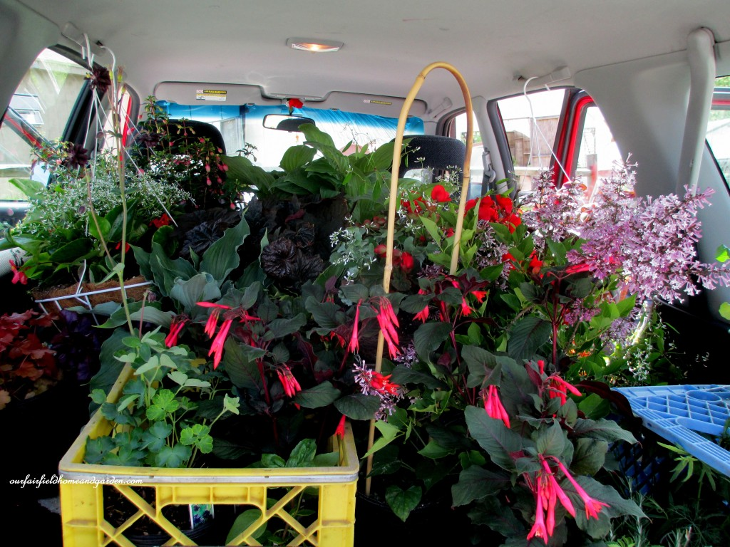 Room To Spare! http://ourfairfieldhomeandgarden.com/road-trip-lancaster-county-greenhouses/