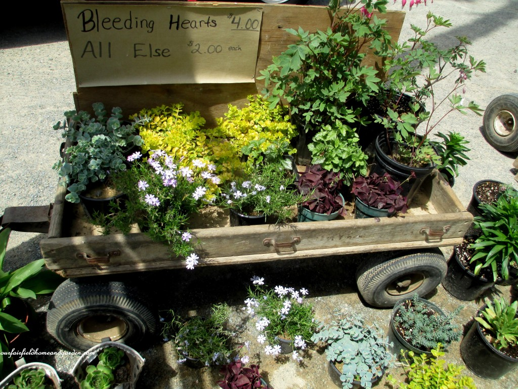 roadside stand http://ourfairfieldhomeandgarden.com/road-trip-lancaster-county-greenhouses/