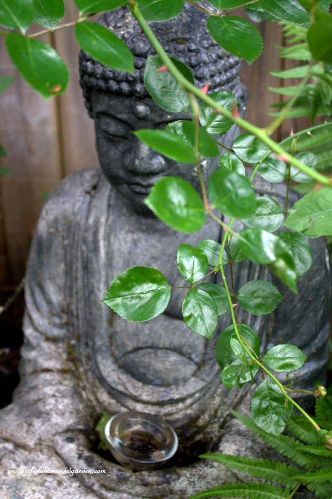 Buddha ~ Cottage In the Roses https://ourfairfieldhomeandgarden.com/cottage-in-the-roses/
