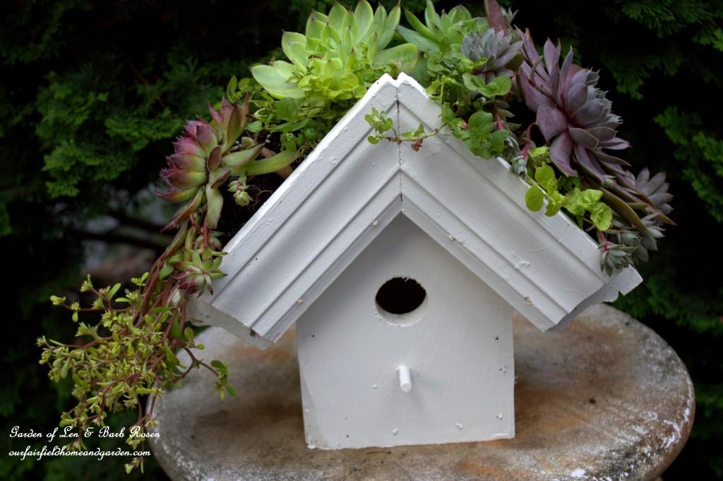 DIY Greenroof Birdhouse http://ourfairfieldhomeandgarden.com/diy-easy-greenroof-birdhouses/