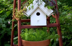 Greenroof Birdhouses