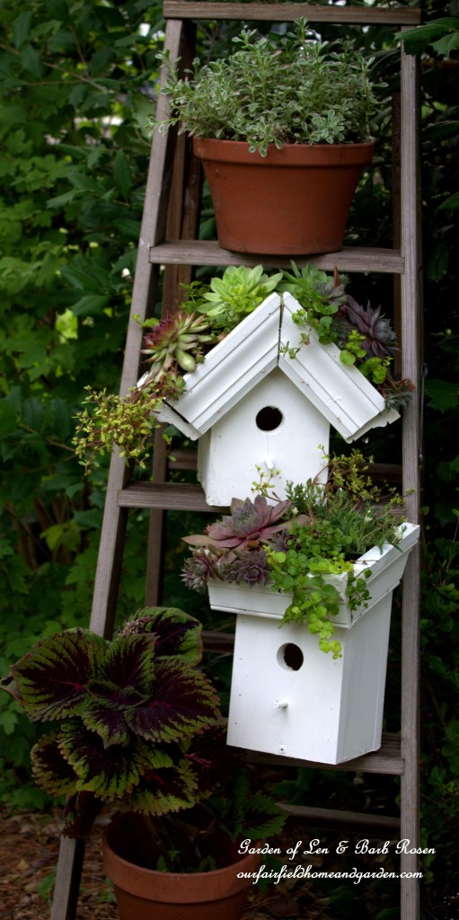 Diy Easy Greenroof Birdhouses Our Fairfield Home Amp Garden