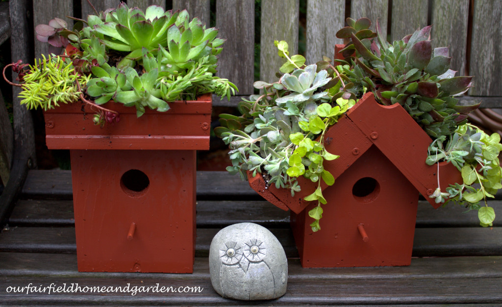Green Roof Birdhouse http://ourfairfieldhomeandgarden.com/diy-easy-greenroof-birdhouses/