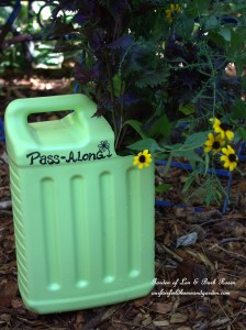 Pass-Along Plant Tote http://ourfairfieldhomeandgarden.com/diy-pass-along-plant-tote/
