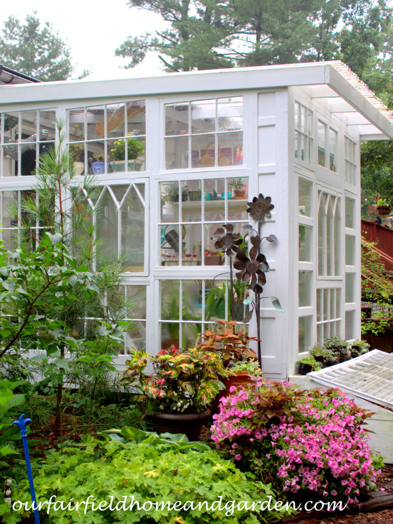 Greenhouse at Our Fairfield Home and Garden https://ourfairfieldhomeandgarden.com/building-a-repurposed-windows-greenhouse/