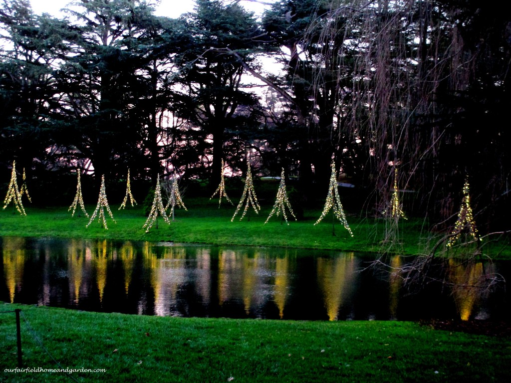 Longwood Christmas http://ourfairfieldhomeandgarden.com/a-longwood-christmas-evening-stroll/