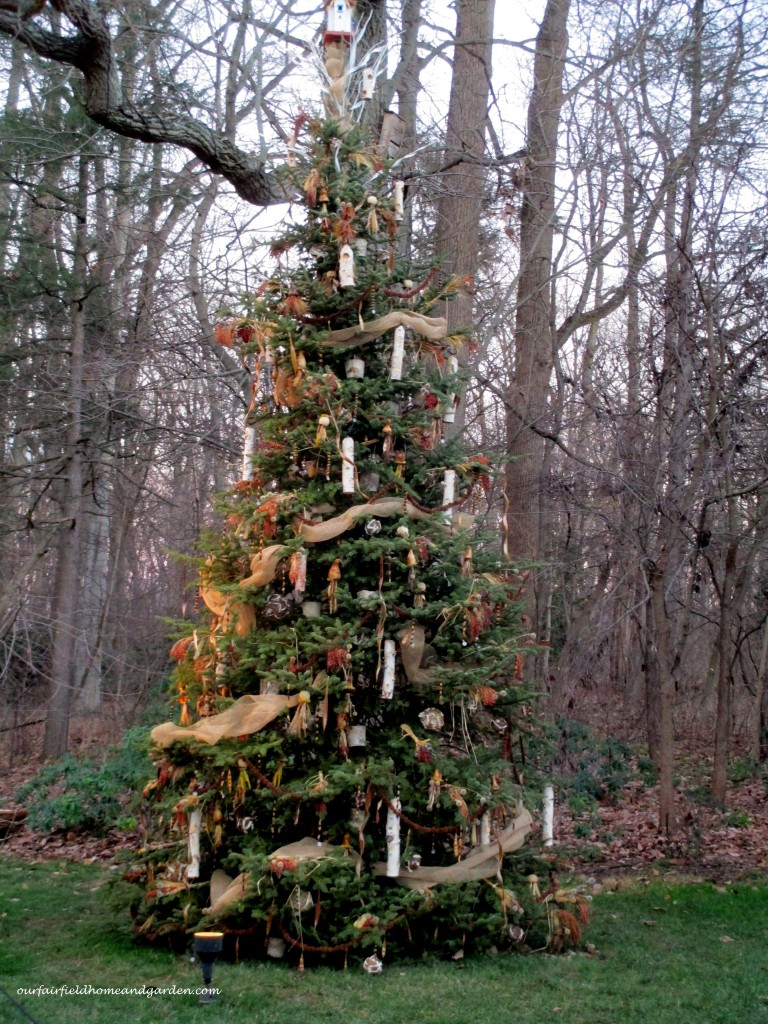 Bird Tree https://ourfairfieldhomeandgarden.com/a-longwood-christmas-evening-stroll/
