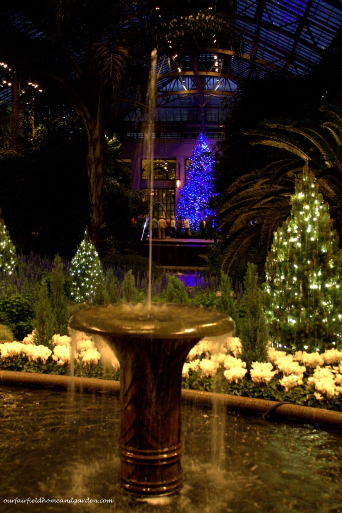 Longwood Gardens Christmas http://ourfairfieldhomeandgarden.com/a-longwood-christmas-evening-stroll/