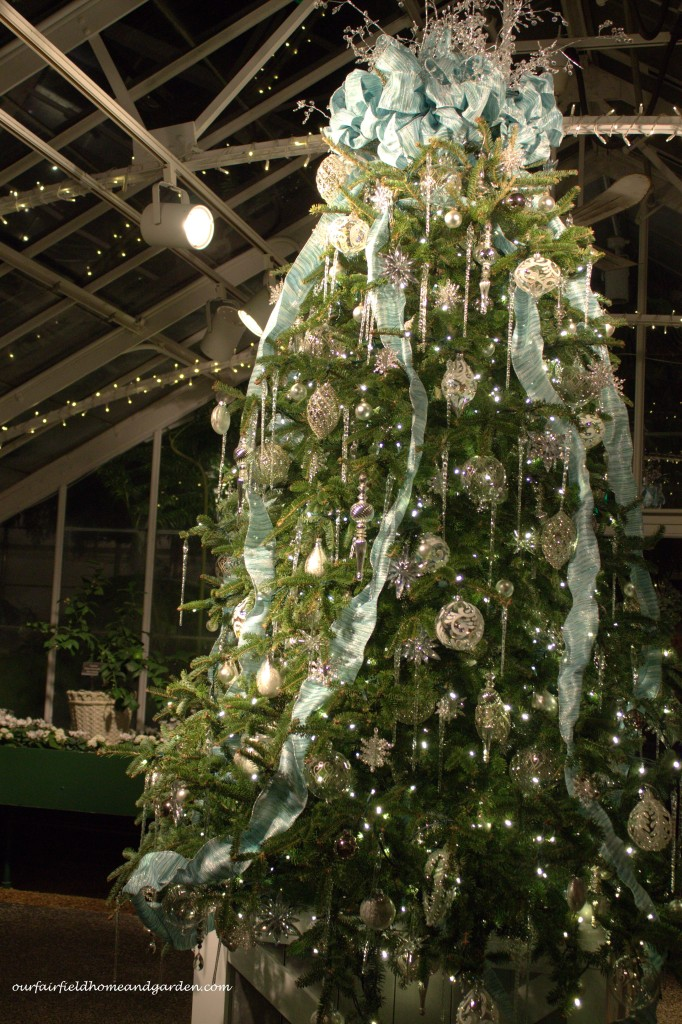 Greenhouse Christmas Tree http://ourfairfieldhomeandgarden.com/a-longwood-christmas-evening-stroll/