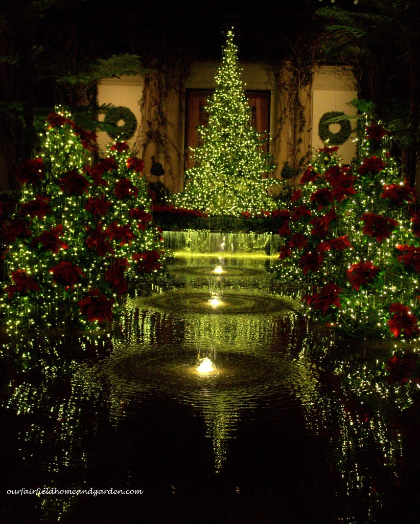 A Longwood Christmas http://ourfairfieldhomeandgarden.com/a-longwood-christmas-evening-stroll/