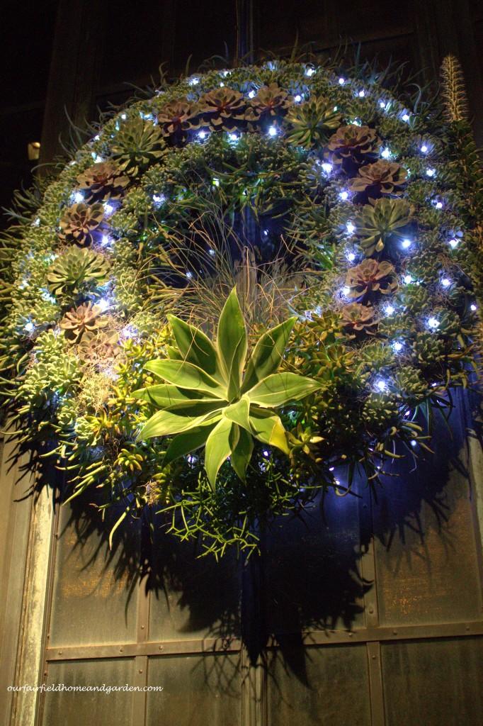 Succulent Christmas Wreath https://ourfairfieldhomeandgarden.com/a-longwood-christmas-evening-stroll/