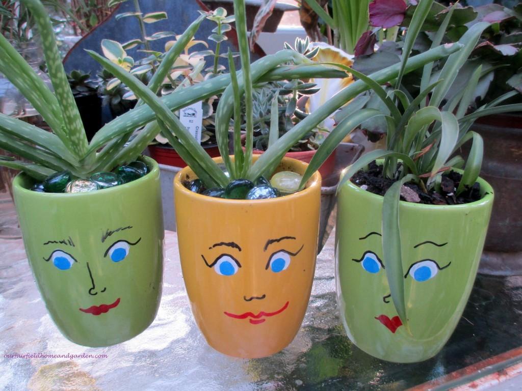 """Mugsies"" mug pots http://ourfairfieldhomeandgarden.com/mug-pots/"