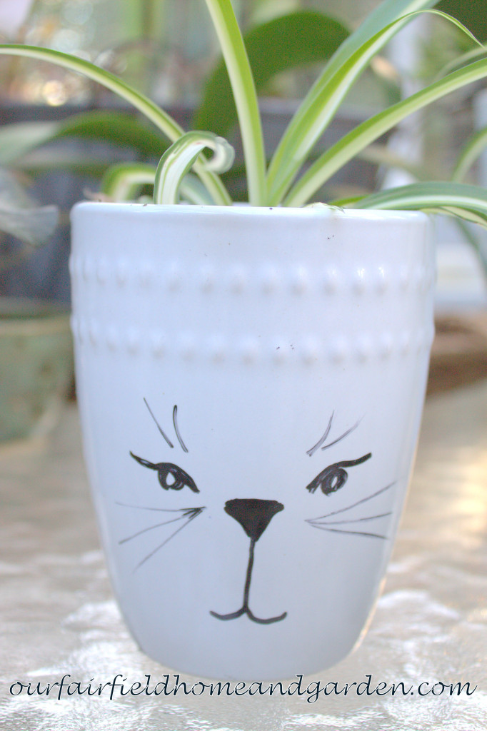 Mug Pots http://ourfairfieldhomeandgarden.com/mug-pots/