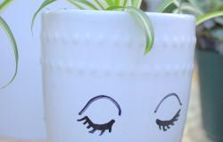 Mug Pots