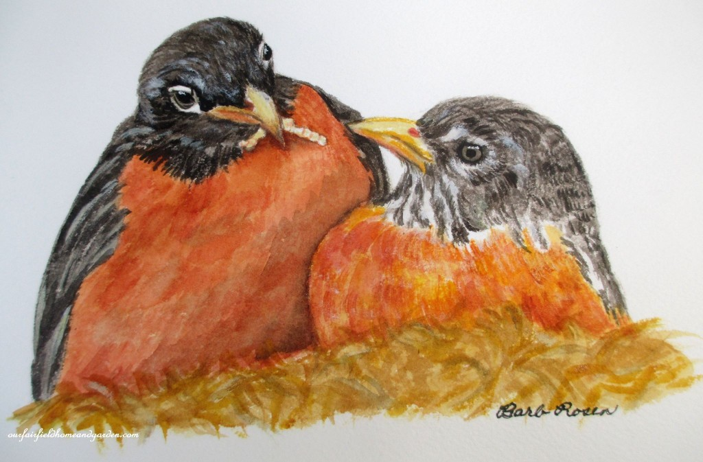 American Robins painted by Barb Rosen http://ourfairfieldhomeandgarden.bigcartel.com/product/pair-of-robins-by-barb-rosen