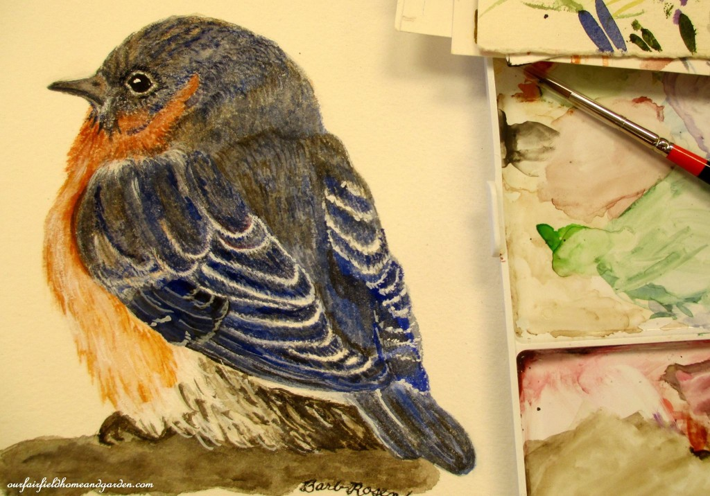 Baby Blue Bird painted by Barb Rosen http://ourfairfieldhomeandgarden.bigcartel.com/