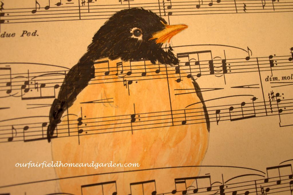 Painting a Robin http://ourfairfieldhomeandgarden.com/painting-a-robin-step-by-step/