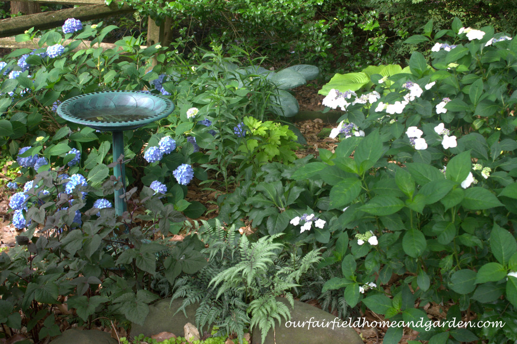 Shade Garden http://ourfairfieldhomeandgarden.com/our-fairfield-home-and-garden-tour/