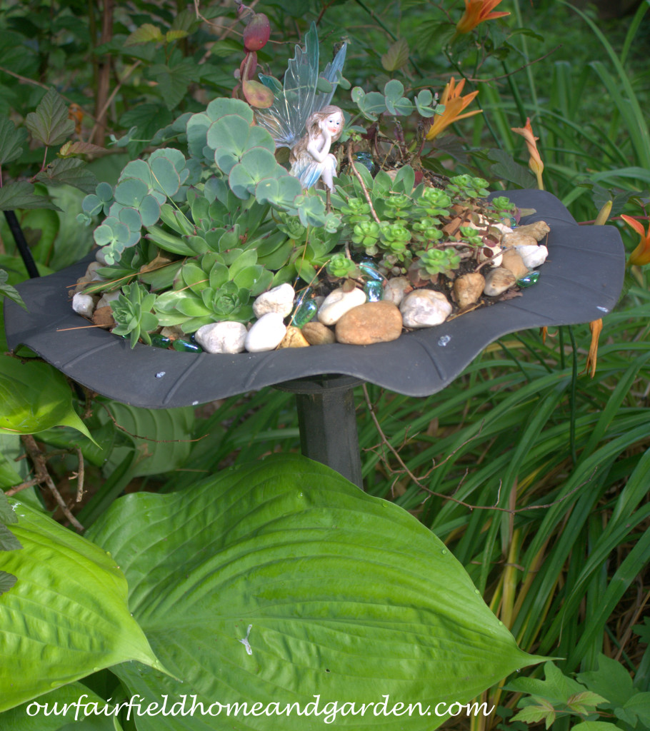 Succulent Fairy Garden http://ourfairfieldhomeandgarden.com/our-fairfield-home-and-garden-tour/