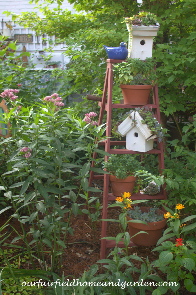 Garden Ladder http://ourfairfieldhomeandgarden.com/our-fairfield-home-and-garden-tour/