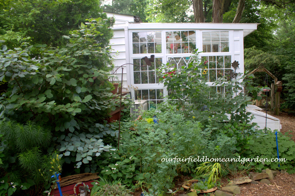 Greenhouse http://ourfairfieldhomeandgarden.com/our-fairfield-home-and-garden-tour/