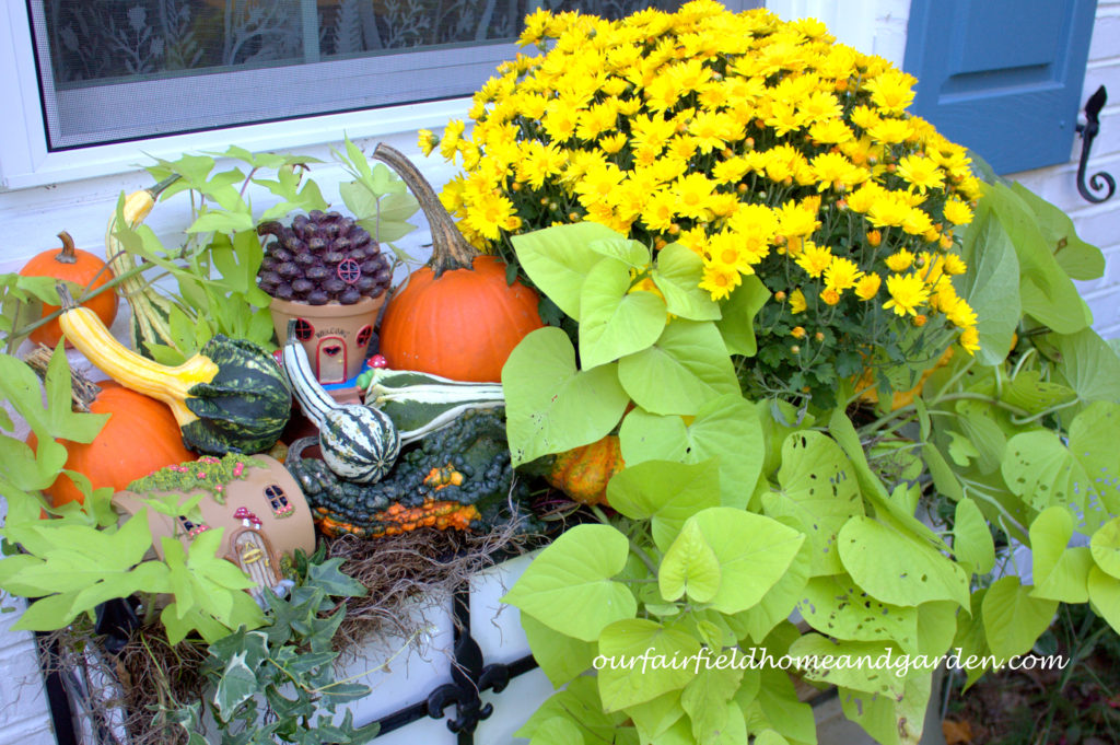 Fall Fairy Windowbox http://ourfairfieldhomeandgarden.com/fall-fairy-windowbox/