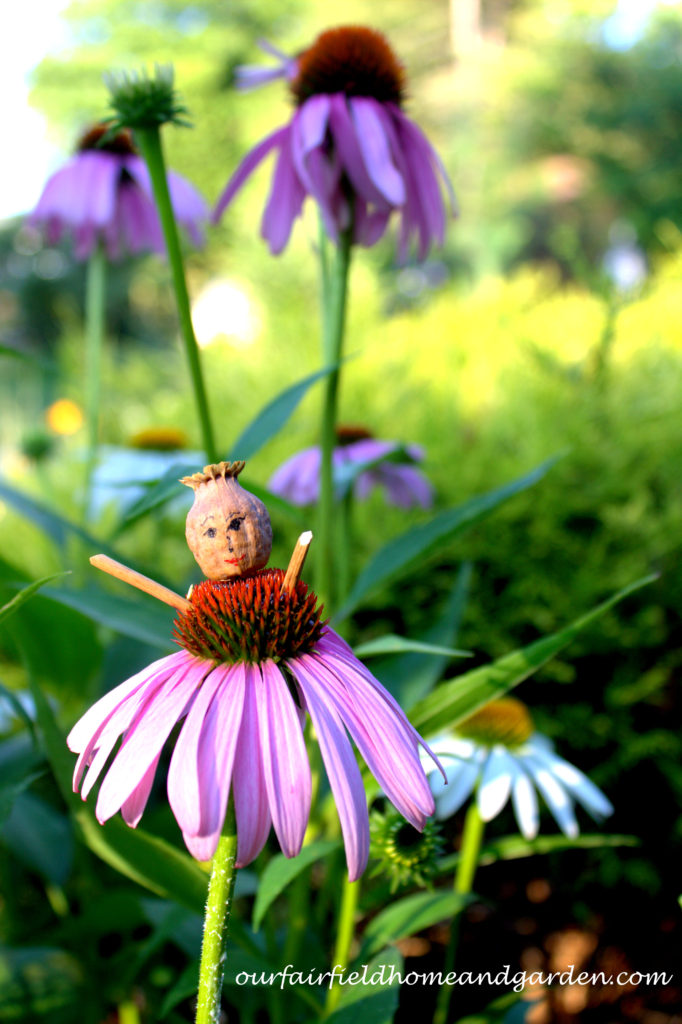 Flower Fairies https://ourfairfieldhomeandgarden.com/flower-fairies/