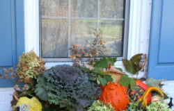 Decorate for Fall Naturally