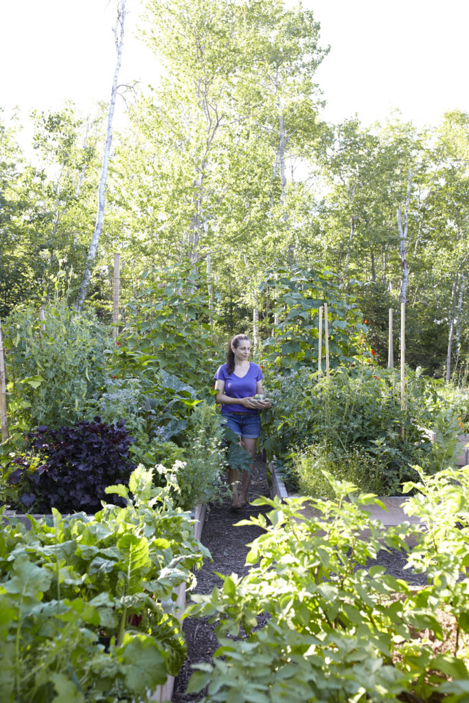 Niki Jabbour's Veggie Garden Remix http://ourfairfieldhomeandgarden.com/book-review-niki-jabbours-veggie-garden-remix/