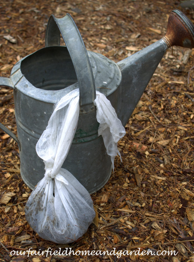 Cheesecloth in the Garden http://ourfairfieldhomeandgarden.com/cheesecloth-uses-in-the-garden-practical-and-recyclable/