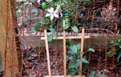 Bed Springs Trellis