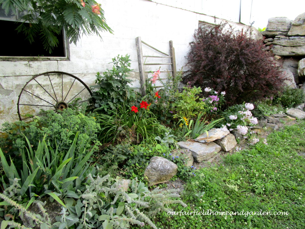 Country Lane Succulents http://ourfairfieldhomeandgarden.com/field-trip-country-lane-succulents-new-holland-pa/