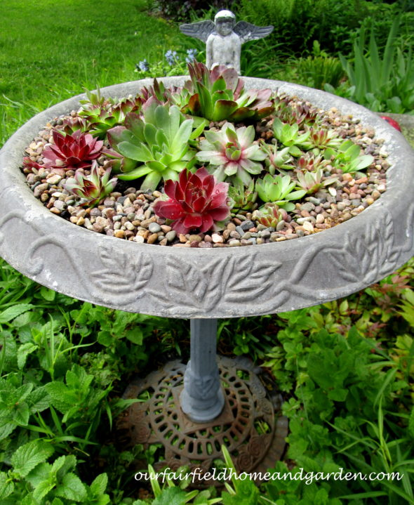 https://ourfairfieldhomeandgarden.com/repurposed-birdbath-succulent-planter/